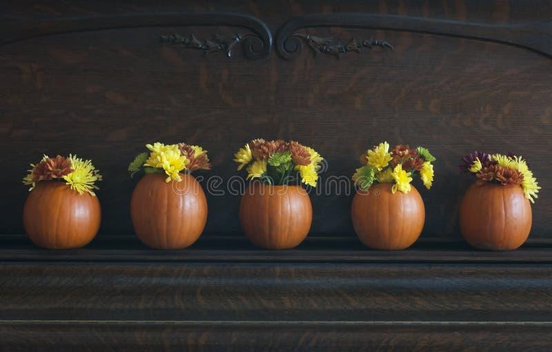 Floreros de la calabaza fotografía de archivo libre de regalías