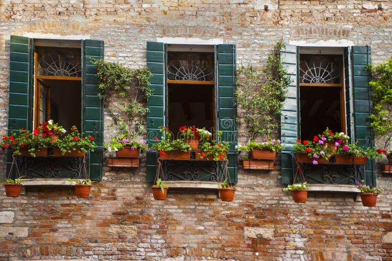 Download Caixa Da Flor, Veneza, Italia Foto de Stock - Imagem de arquitetura, fotografia: 29832014