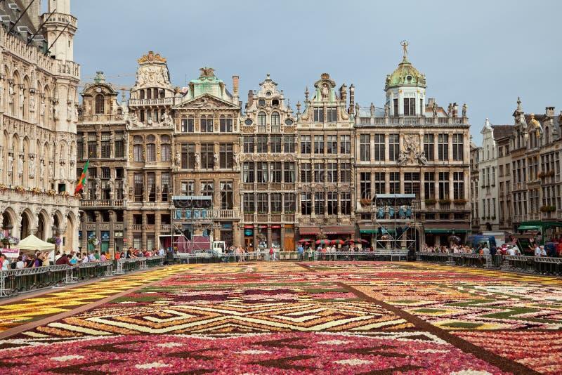 Floresça o festival do tapete de Bélgica em Grand Place de Bruxelas com suas construções históricas fotos de stock royalty free