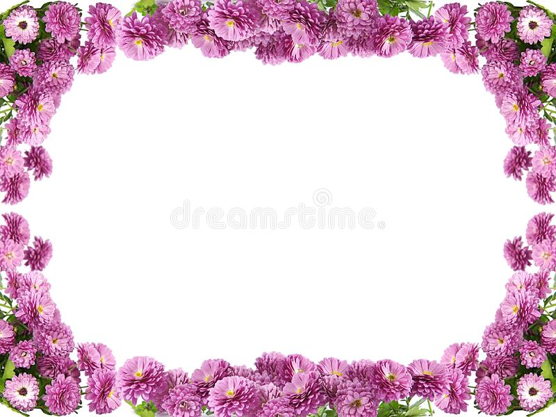 Floresça o frame fotos de stock royalty free
