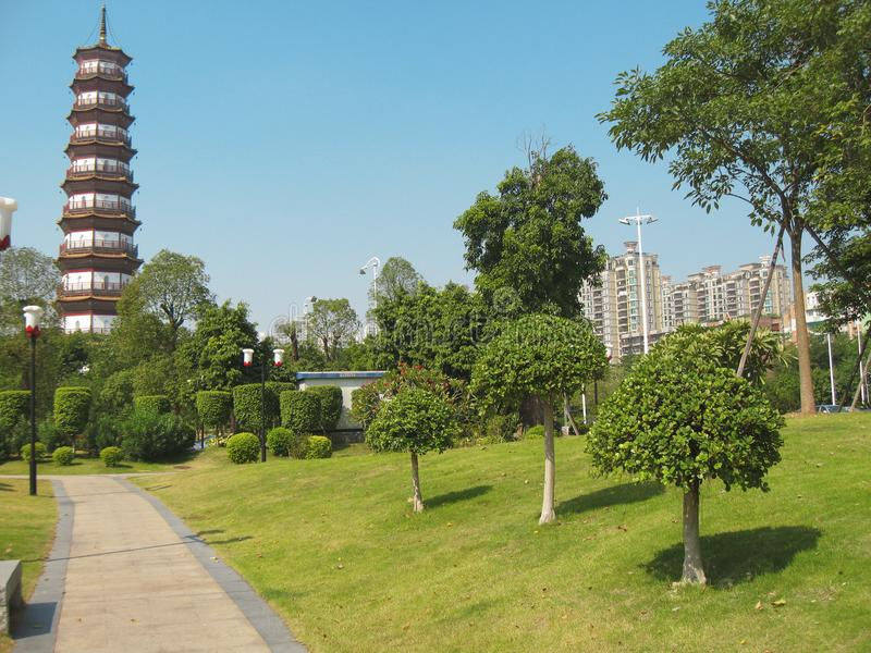Floresça o pagode de um templo de seis árvores de Banyan fotografia de stock royalty free