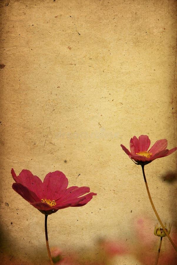 Floresça o papel fotografia de stock