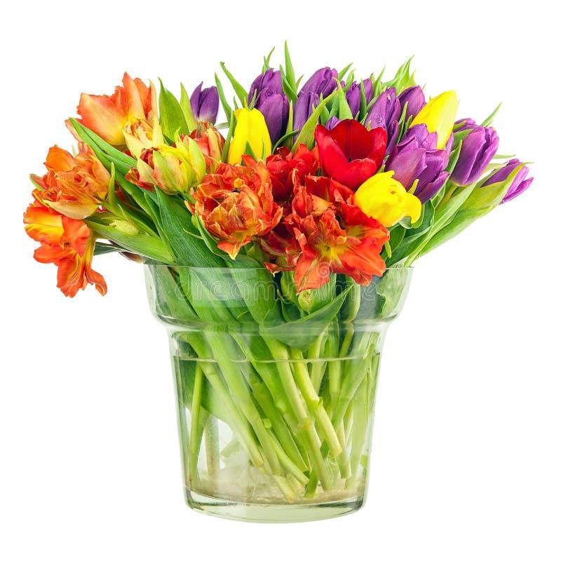 Floresça o ramalhete das tulipas coloridas no vaso de vidro isolado imagem de stock royalty free