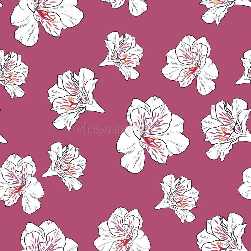 Floresça o teste padrão sem emenda com as flores bonitas do lírio do alstroemeria no molde cor-de-rosa escuro do fundo ilustração stock
