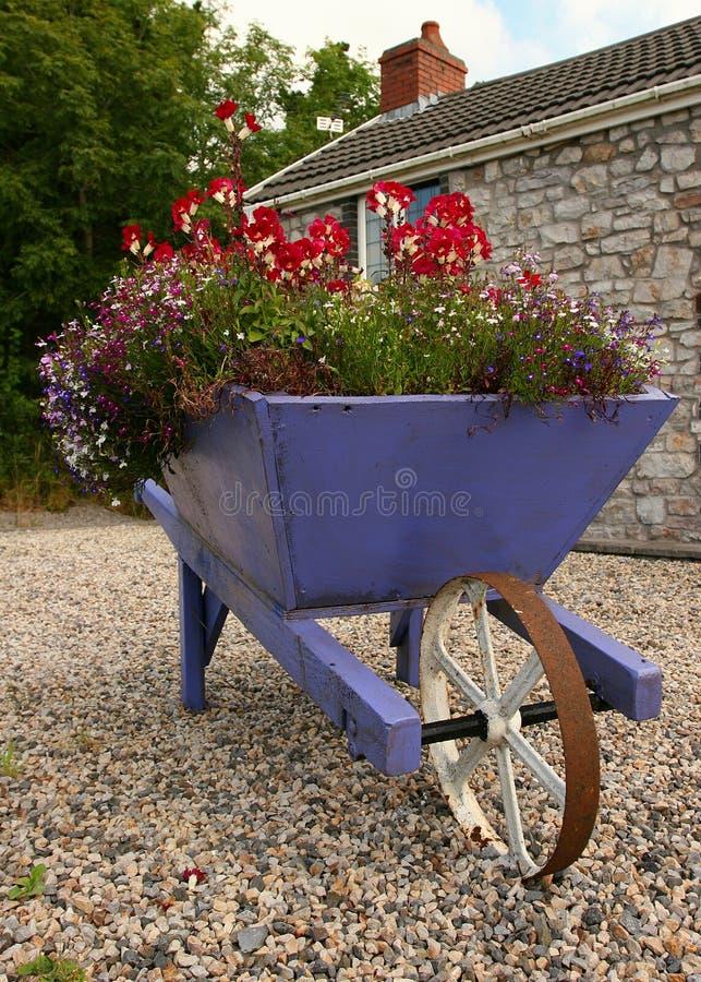 Floresça o Wheelbarrow carregado imagens de stock royalty free
