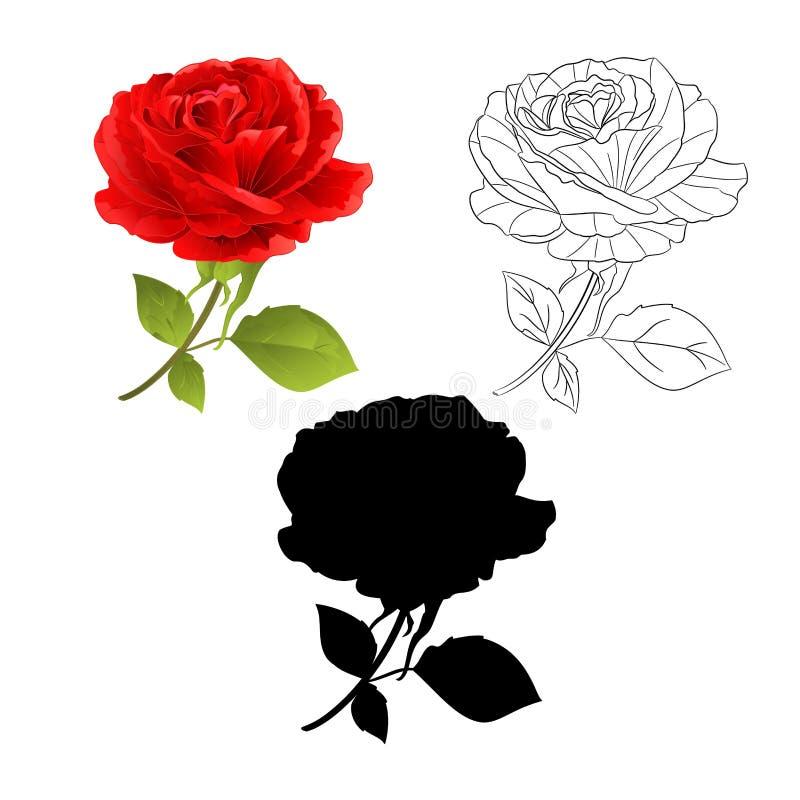 Floresça a rosa do vermelho natural e o esboço e a silhueta em um galho branco do fundo com a ilustração do vetor do vintage das  ilustração do vetor