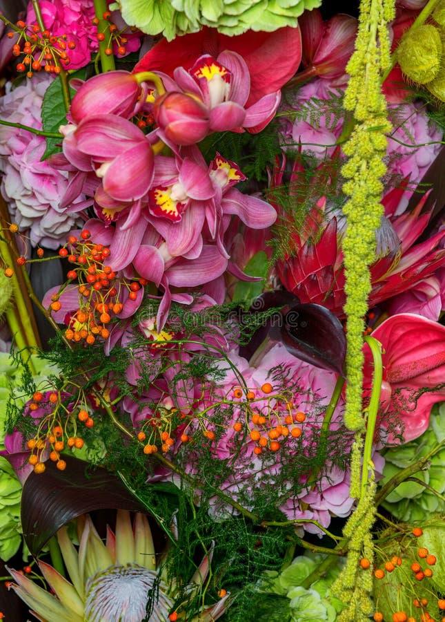 Download Flores 4 foto de archivo. Imagen de flores, azul, anaranjado - 44854610