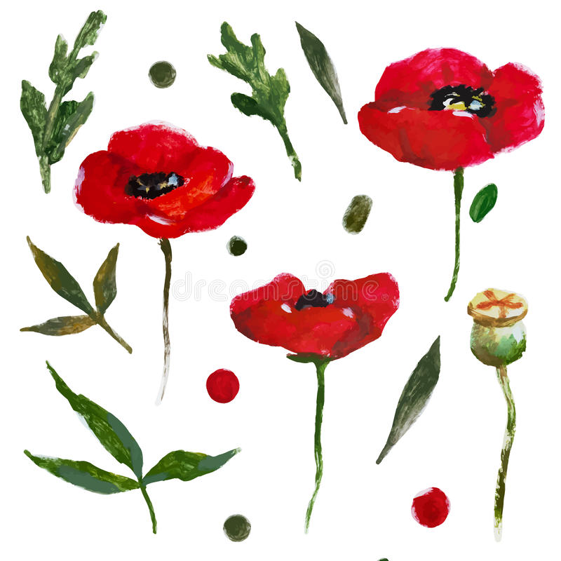 Flores agradáveis da aguarela ilustração royalty free