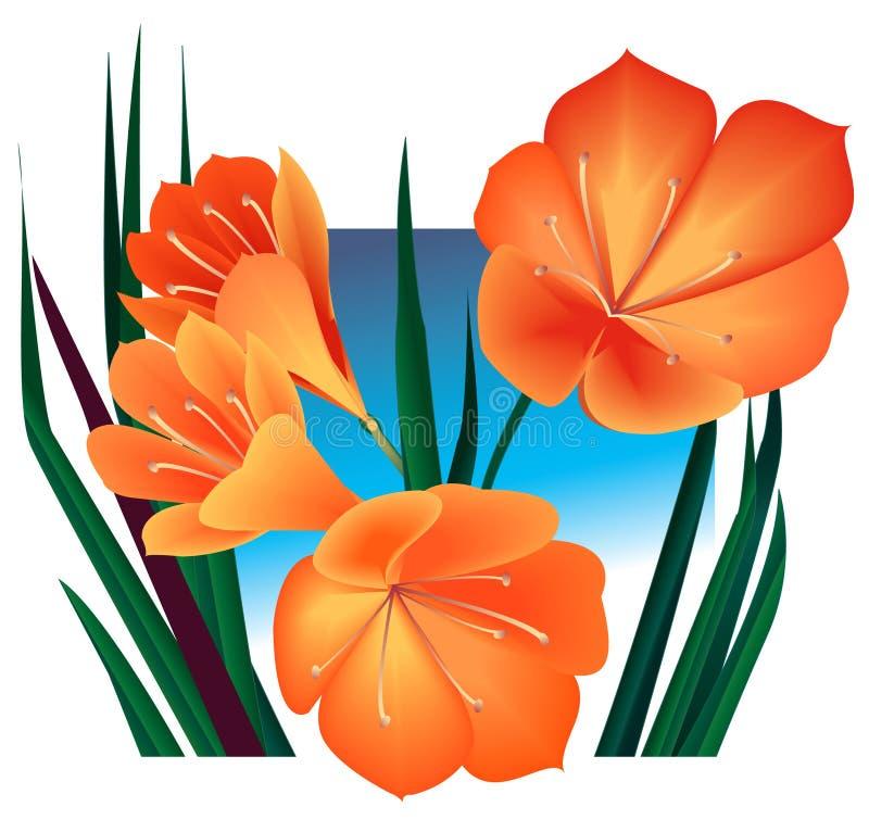 Flores alaranjadas ilustração royalty free