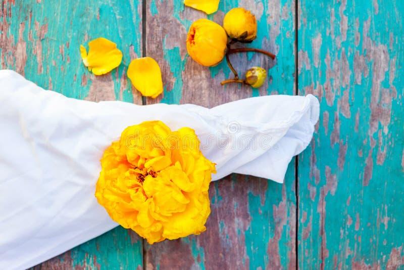 Flores amarelas da árvore do algodão de seda com pano fotografia de stock royalty free