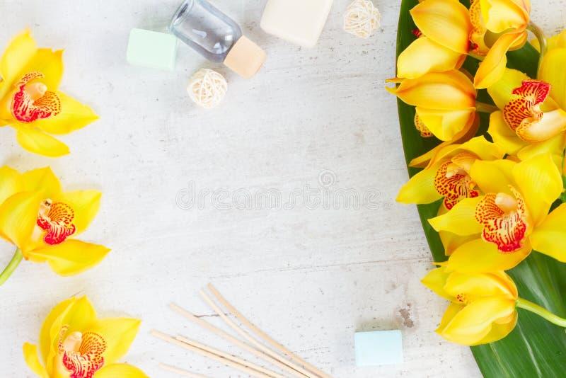 Flores amarelas da orquídea imagem de stock
