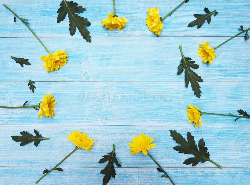 Flores amarelas dos crisântemos na madeira do azul do vintage imagem de stock