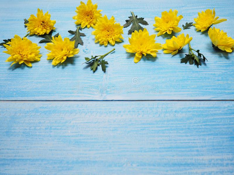 Flores amarelas dos crisântemos na madeira do azul do vintage foto de stock royalty free