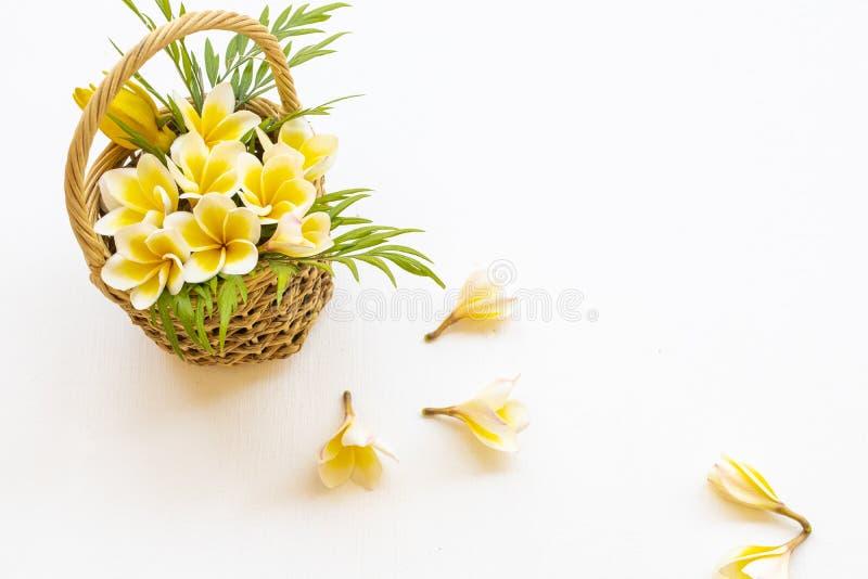 Flores amarelas frangipani flora local da ásia com cesto arranjado estilo postcard plano foto de stock