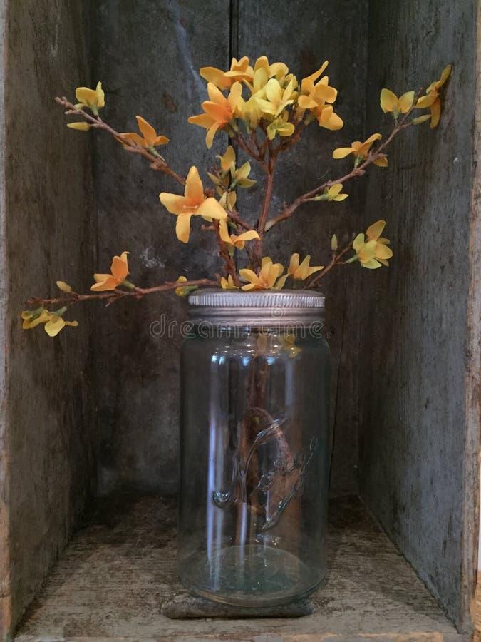 Flores amarelas no frasco de pedreiro do vintage fotos de stock royalty free