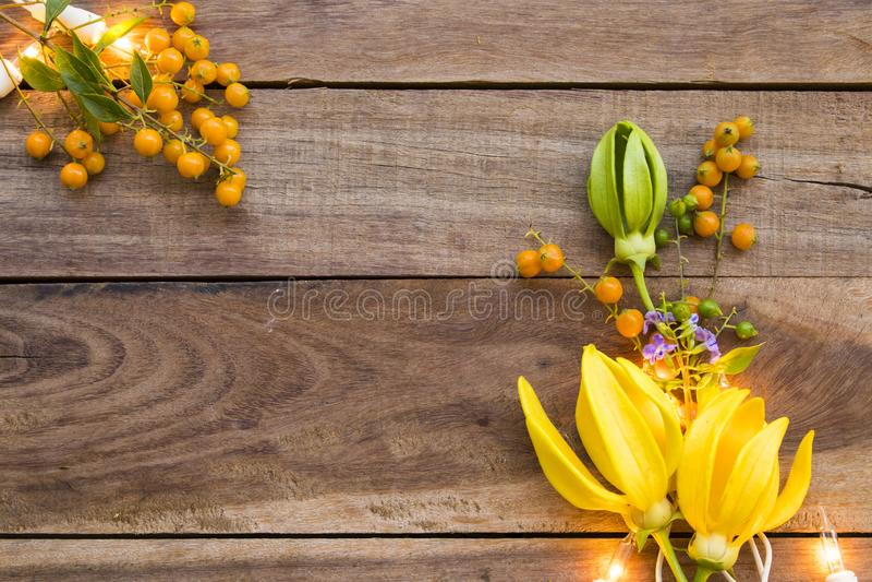 Flores amarelas ylang ylang flora local da ásia com arranjo claro estilo postcard plano foto de stock