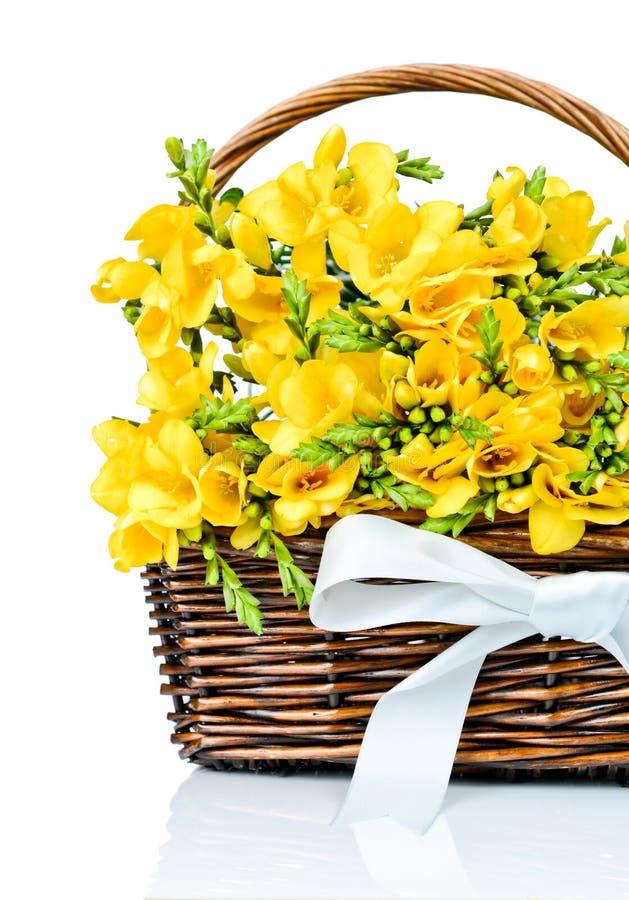 Flores amarillas de la fresia en la cesta imagen de archivo libre de regalías