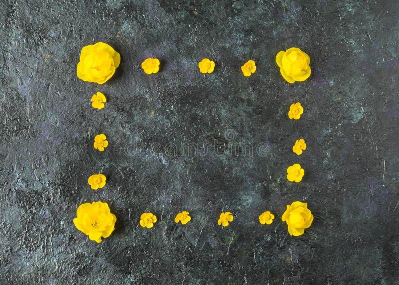 Flores amarillas en un fondo abstracto verde hermoso Composici?n creativa fotos de archivo libres de regalías