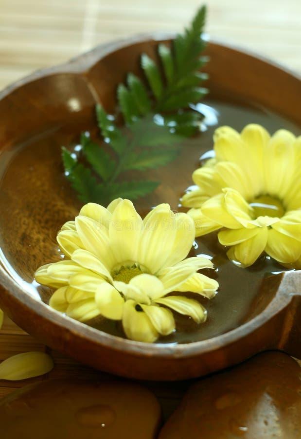 Flores amarillas que flotan en tazón de fuente de madera. fotografía de archivo
