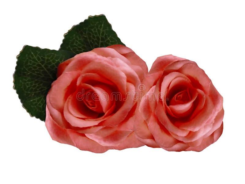 Flores aquarelas de rosas sobre fundo branco. Rosas vermelhas isoladas com caminho de recorte sem sombras. Para o projeto. nave fotografia de stock