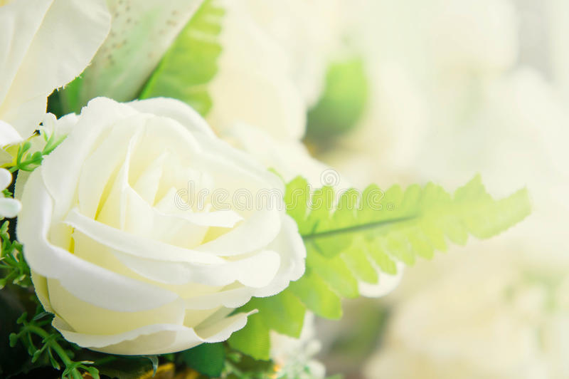 Flores artificiales de la rosa del blanco hermosas como el auténtico imágenes de archivo libres de regalías