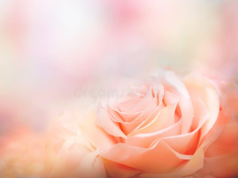 flores artificiales hermosas en fondo artístico foto de archivo