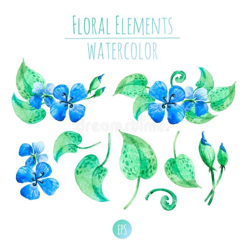Flores azules de la acuarela ilustración del vector