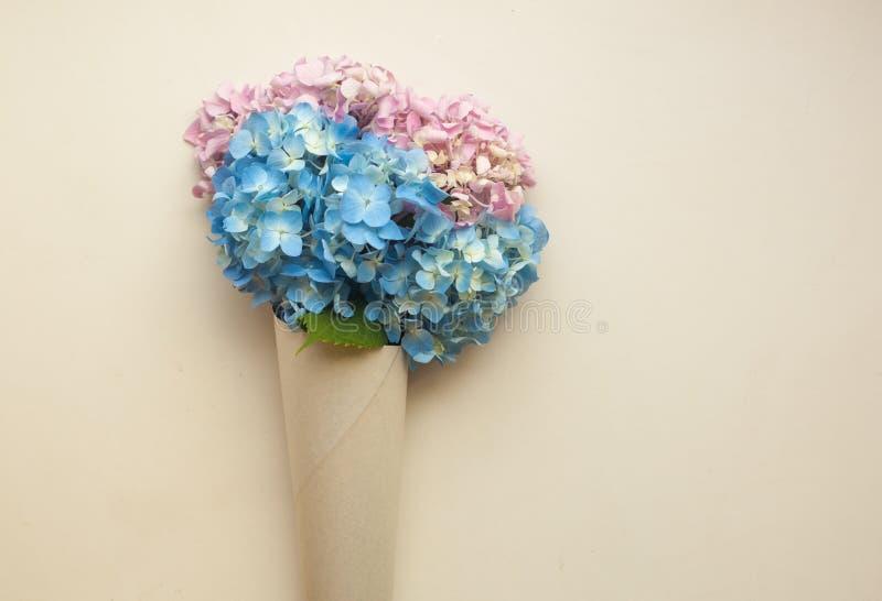 Flores azules de la hortensia en cono contra fondo beige en colores pastel Endecha plana, espacio de la copia fotos de archivo