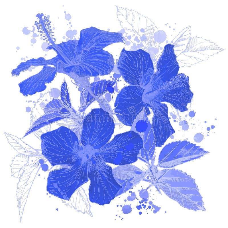 Flores azules del hibisco stock de ilustración