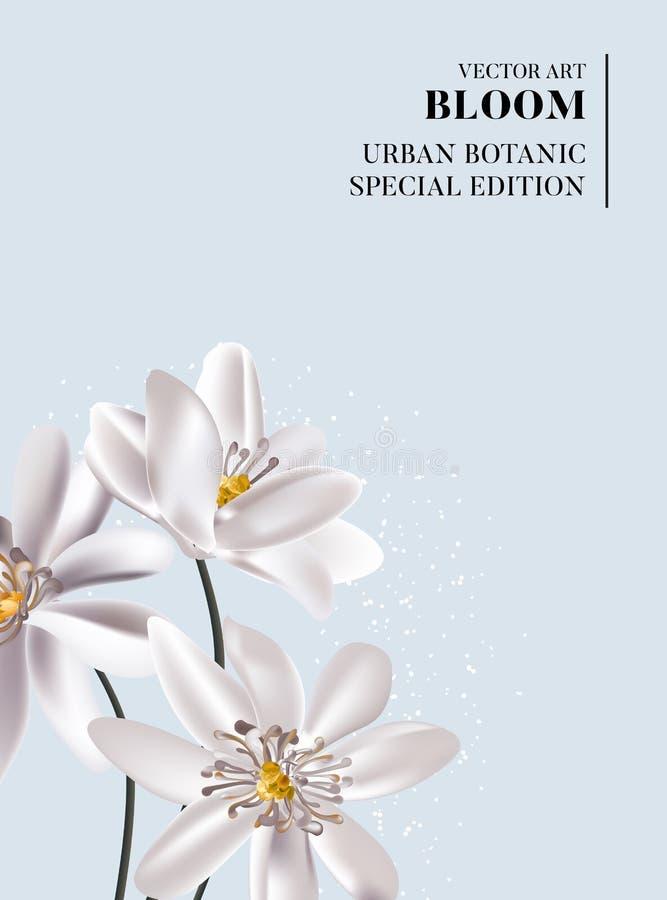 Flores blancas casadas tarjeta de saludo tierno en flor suave Dibujo acuarela moderno sobre fondo azul fotos de archivo libres de regalías