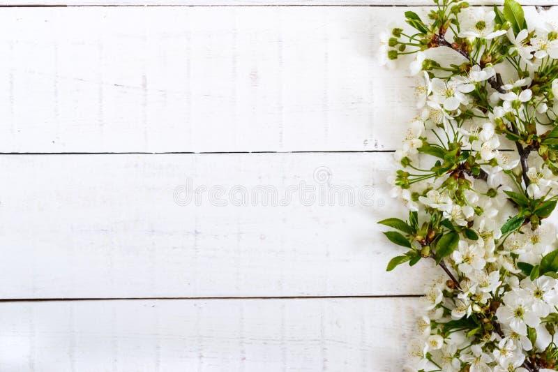 Flores blancas de una cereza en ramas en un fondo de madera blanco foto de archivo
