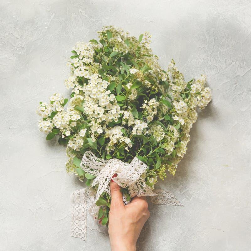 Flores blancas del spirea del ramo en mano femenina en fondo ligero Visión desde arriba imagenes de archivo