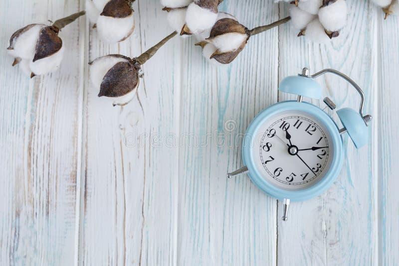 Flores blancas hermosas del algodón y despertador azul en el fondo de madera de la turquesa, hogar fotos de archivo libres de regalías