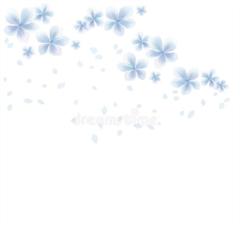Flores blancas y pétalos azules del vuelo aislados en el fondo blanco flores del Apple-árbol Cherry Blossom ilustración del vector