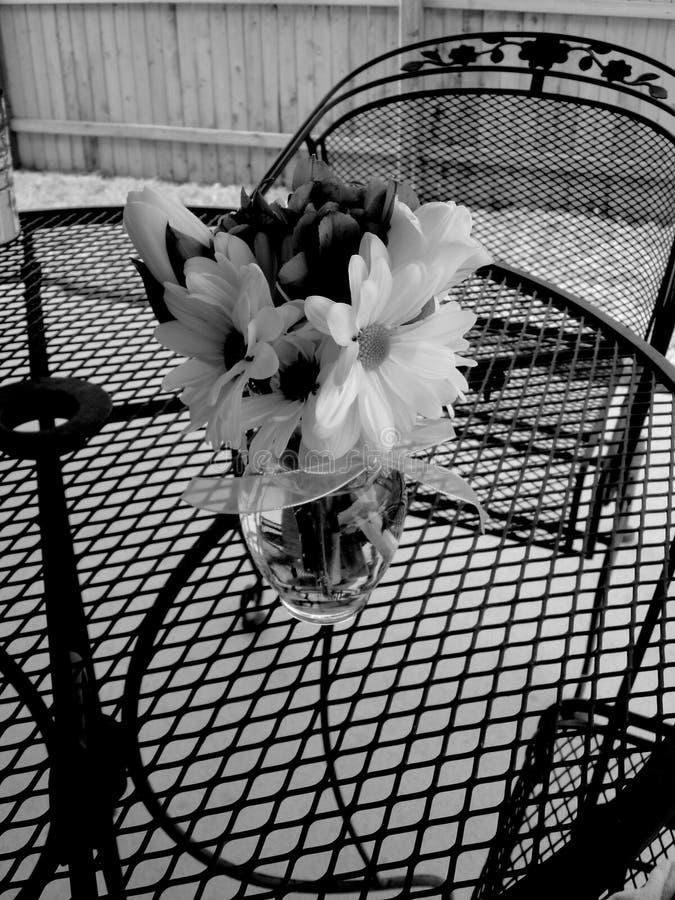 Flores blancos y negros en el vector fotos de archivo