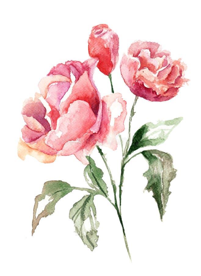 Flores bonitas ilustração do vetor