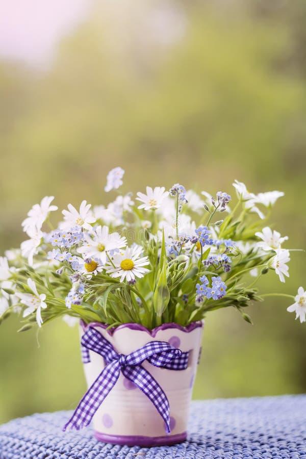 Flores bonitas da margarida no vaso decorativo pequeno foto de stock