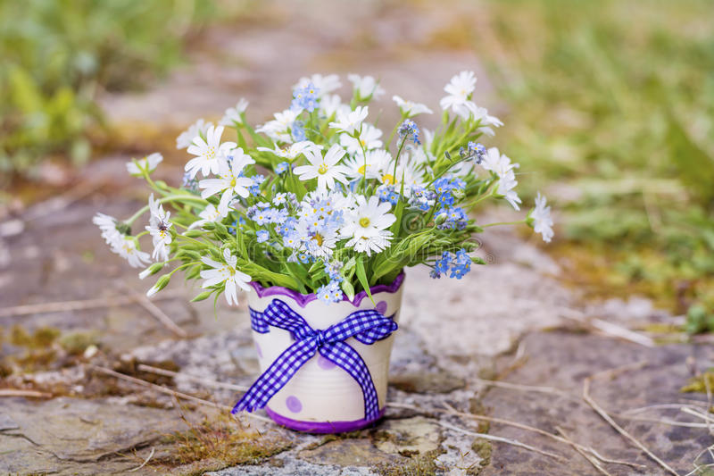 Flores bonitas da margarida no vaso decorativo pequeno imagem de stock royalty free