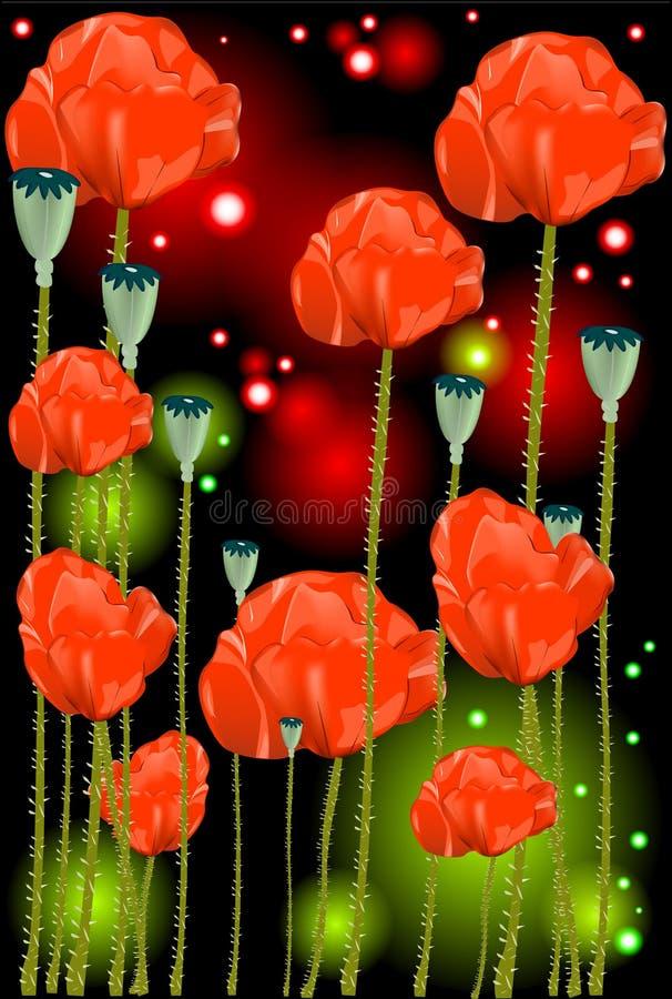 Flores bonitas de uma papoila fotografia de stock royalty free