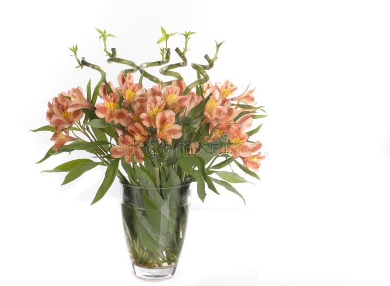 Flores bonitas do feriado fotografia de stock