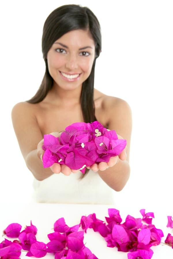 Flores bonitas do indian e do bougainvillea foto de stock royalty free