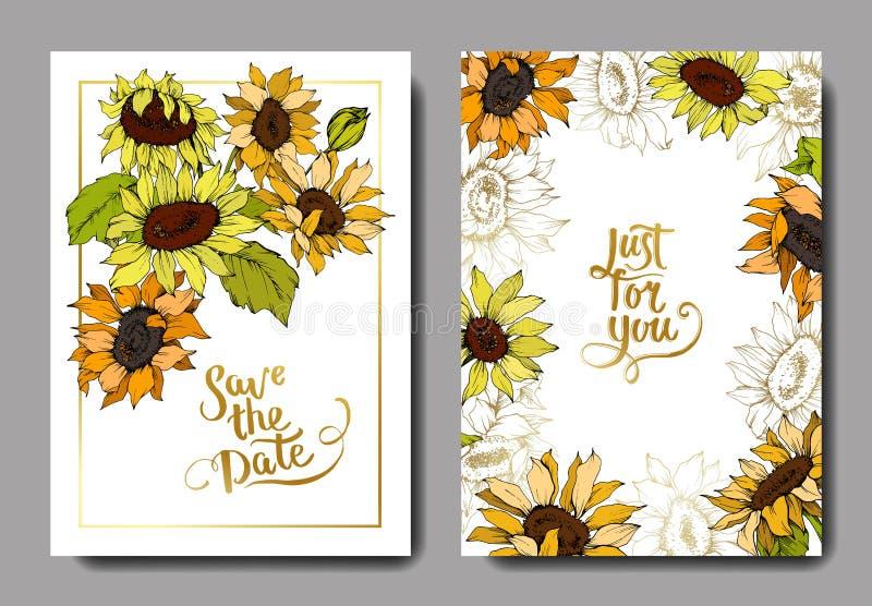 Flores botánicas del girasol del vector Arte grabado amarillo y verde de la tinta Casarse la frontera decorativa floral de la tar libre illustration