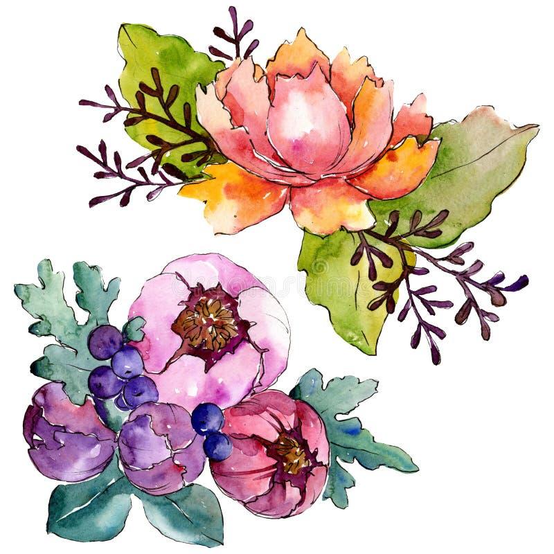 Flores botánicas florales del ramo púrpura azul Conjunto del fondo de la acuarela Elemento aislado del ejemplo de los ramos ilustración del vector