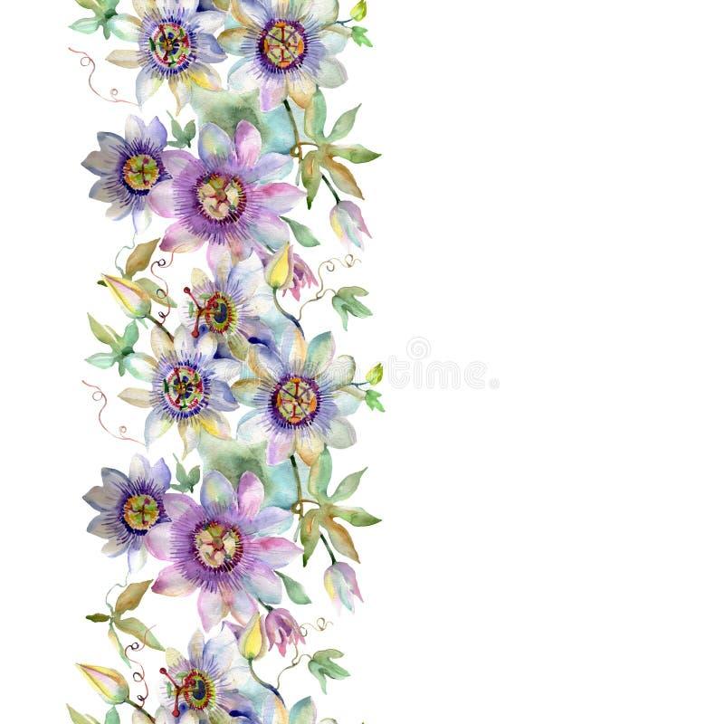 Flores botánicas florales del ramo violeta azul Sistema del ejemplo del fondo de la acuarela Modelo inconsútil del fondo stock de ilustración