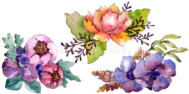 Flores botânicas florais do ramalhete roxo azul Jogo do fundo da aguarela Elemento isolado da ilustração dos ramalhetes ilustração do vetor