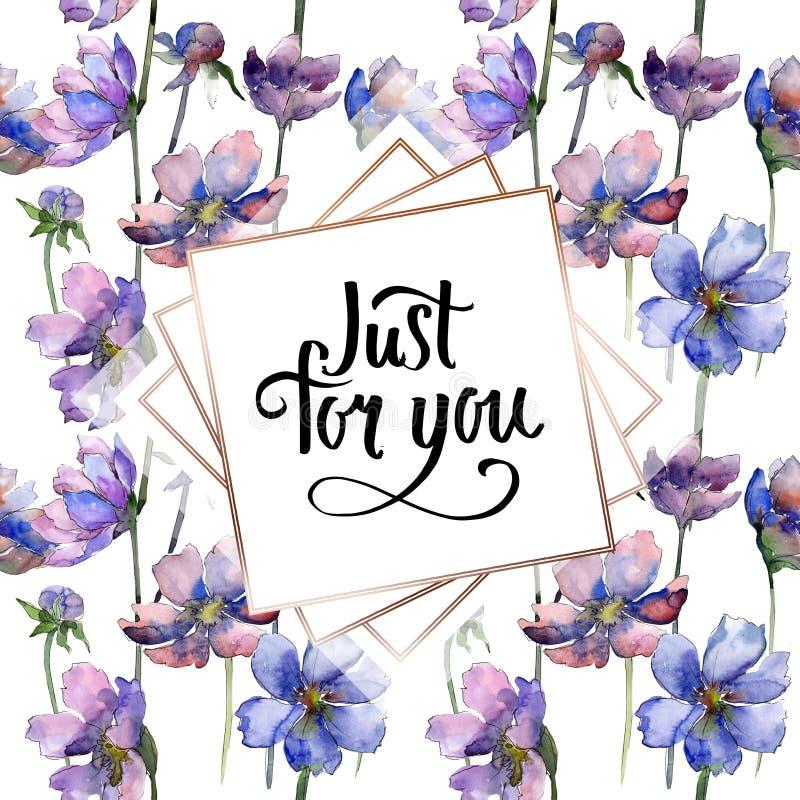 Flores bot?nicas florais da flor violeta do cosmos Grupo da ilustra??o do fundo da aquarela Quadrado do ornamento da beira do qua fotografia de stock royalty free