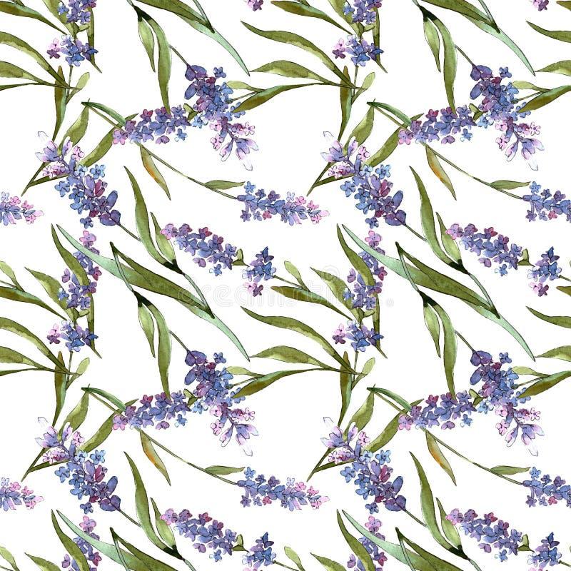 Flores bot?nicas florales de la lavanda violeta azul Sistema del ejemplo del fondo de la acuarela Modelo incons?til del fondo stock de ilustración