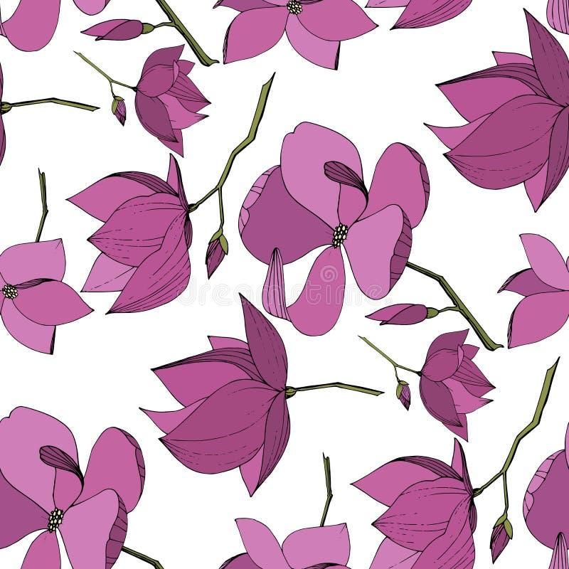 Flores bot?nicas florales de la magnolia del vector Arte grabado p?rpura de la tinta Modelo incons?til del fondo libre illustration