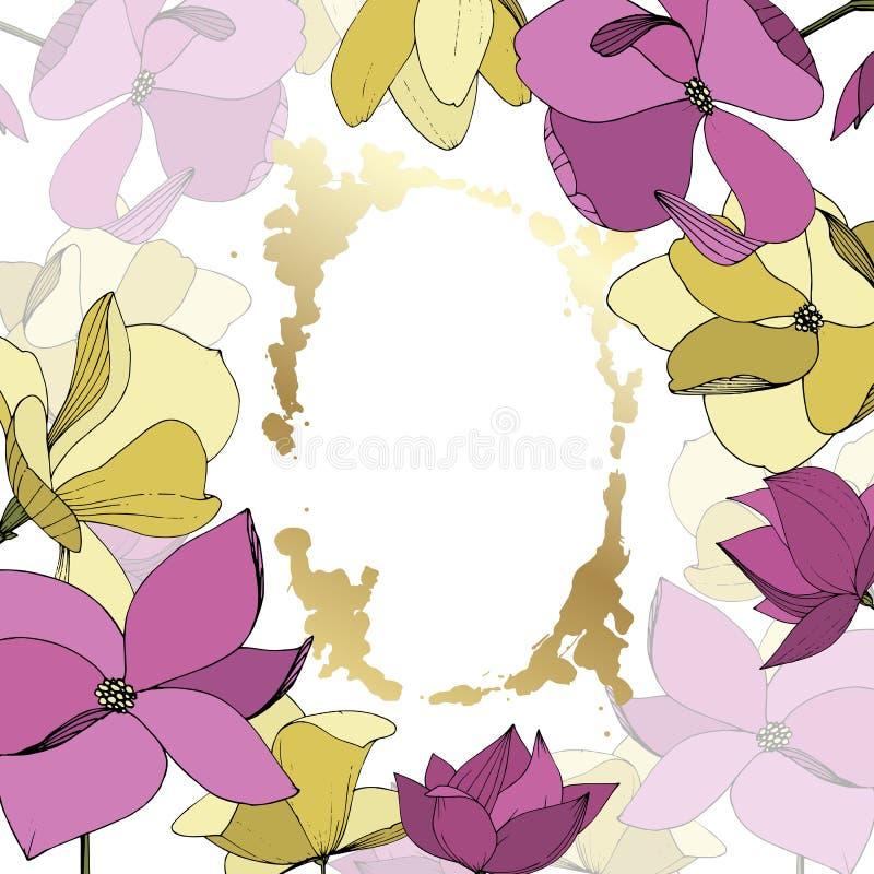 Flores bot?nicas florales de la magnolia del vector P?rpura y arte grabado amarillo de la tinta Cuadrado del ornamento de la fron ilustración del vector