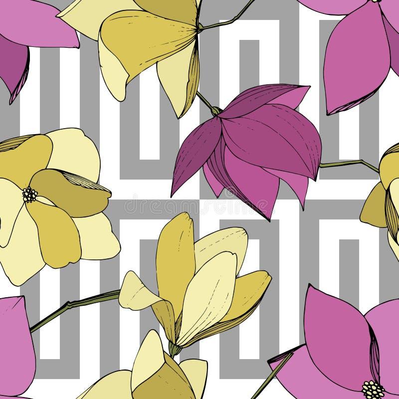 Flores bot?nicas florales de la magnolia del vector P?rpura y arte grabado amarillo de la tinta Modelo incons?til del fondo libre illustration